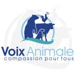 Voix Animale