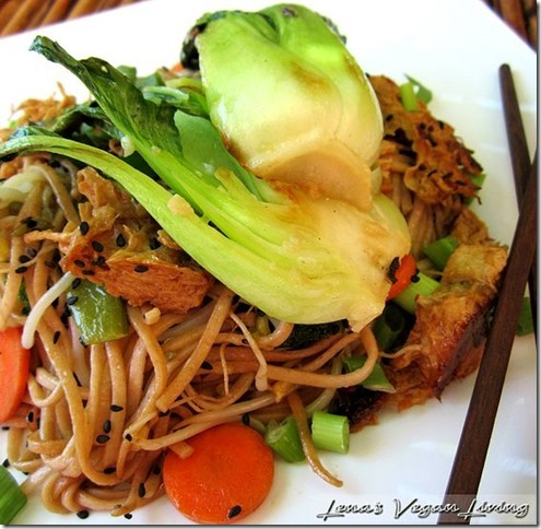 Lena's Vegan Living Udon Noodles recipe